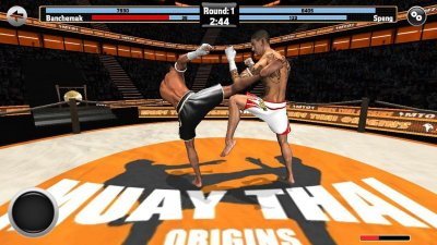 Muay Thai - Fighting Origins